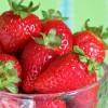 La fraise, un fruit délicieux riche en vitamine C