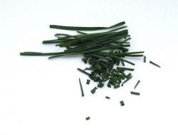 La ciboulette, une herbe bonne pour la forme